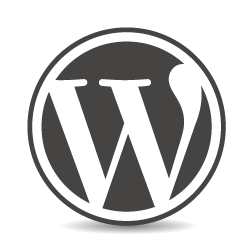 Custom Wordpress Web Design Madison WI